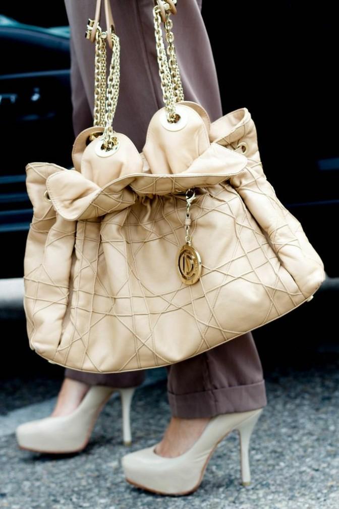 Iconic Dior bag
